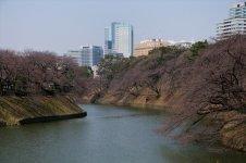 214633_11-01yotsuyabancyou