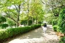 171256_08-01harumitukishimakachidoki