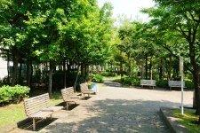 171035_06-02yushimahongou
