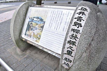 ソメイヨシノ発祥の地の碑
