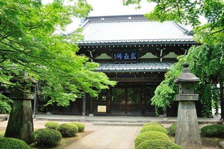 大渓山 豪徳寺