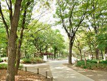 緑を楽しめる場所にも恵まれている新宿副都心