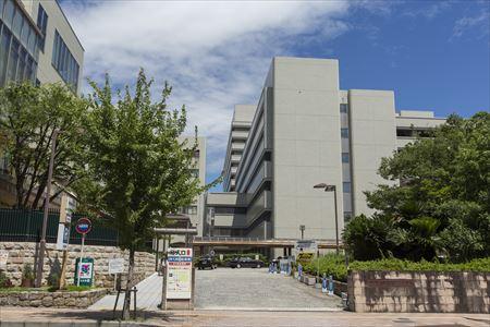 大学 神戸 神戸大学
